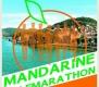 1. Mandarine halfmarathon